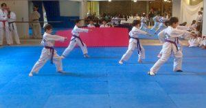 club dojang taekwondo paris 13