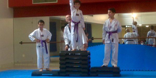 club taekwondo paris